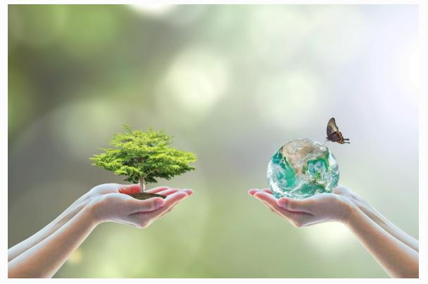 Forbes.com / How your Company should embrace Environmental, Social and Governance Issues